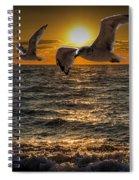 Flying Gulls At Sunset Spiral Notebook