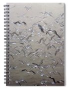 Flying Gulls Spiral Notebook