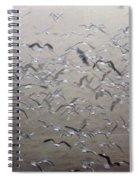 Flying Gulls Spiral Notebook