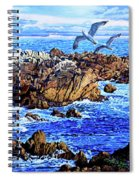 Flying High Over California Spiral Notebook