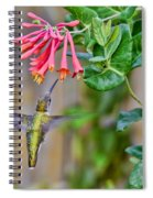 Flying Jewel Spiral Notebook