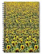 Flying Over Sunflower Fields Spiral Notebook