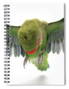 Flying Parrot  Spiral Notebook