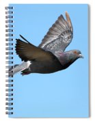 Flying Pigeon . 7d8640 Spiral Notebook