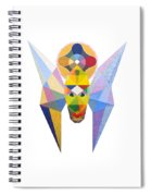 Flying Solar Magus Spiral Notebook