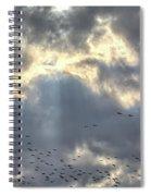 Flying Through Sun Rays 2 Spiral Notebook