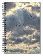 Flying Through Sun Rays Spiral Notebook