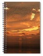 Flying To South Spiral Notebook