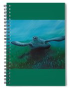 Flying Turtle Spiral Notebook