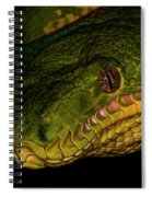 Focus - A Close Look At An Emerald Boa Constrictor Spiral Notebook