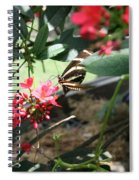 Focus In The Center - Black And White Butterfly Spiral Notebook