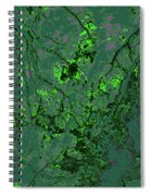 Focus Of Attention 11 Spiral Notebook