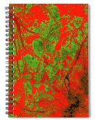 Focus Of Attention 21 Spiral Notebook