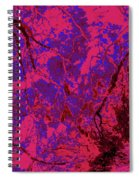 Focus Of Attention 23 Spiral Notebook