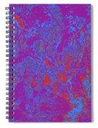 Focus Of Attention 40 Spiral Notebook