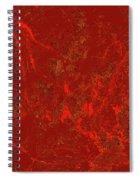 Focus Of Attention 41 Spiral Notebook
