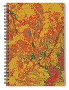 Focus Of Attention 44 Spiral Notebook