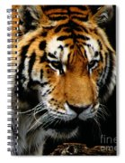 Focused Spiral Notebook