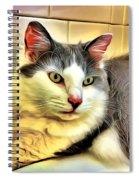 Focused Feline Spiral Notebook