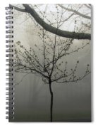 Fog In Shenandoah Spiral Notebook
