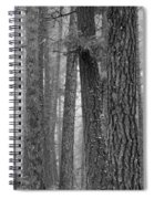 Fog In The Pines Spiral Notebook