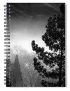 Fog In The Trees Spiral Notebook