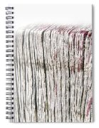 Foggy Beachpole Number 8 Spiral Notebook