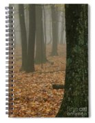 Foggy Forest  Spiral Notebook