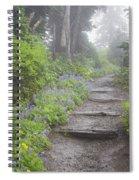 Foggy Forest Path Spiral Notebook