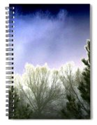 Foggy Moonlit Night Spiral Notebook