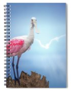 Foggy Morning Spoonbill Spiral Notebook