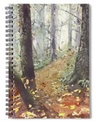 Foggy Path Spiral Notebook
