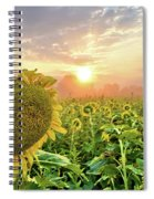 Foggy Yellow Fields 3 Spiral Notebook