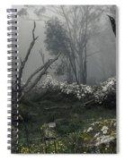 Fogscape Spiral Notebook