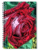 Foiled Again Spiral Notebook