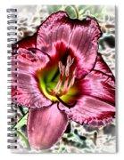 Foiled Beauty - Daylily Spiral Notebook
