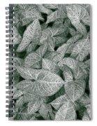Foliage Spiral Notebook