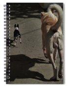 Follow Me... Spiral Notebook