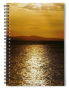 Follow The Gold Spiral Notebook