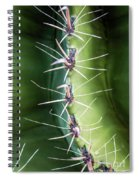 Follow The Leader Spiral Notebook