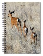 Following Mom Spiral Notebook