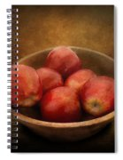 Food - Apples - A Bowl Of Apples  Spiral Notebook