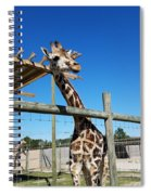 Food For Me? Spiral Notebook