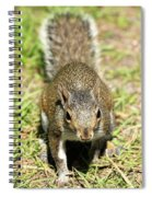 Food I Want Food Spiral Notebook