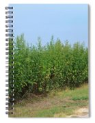 Food Of The Gods Spiral Notebook