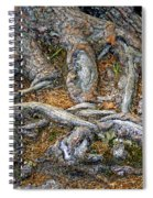 Foot Of The Tree Spiral Notebook