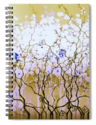 For A Hundred Years She Slept Spiral Notebook