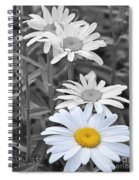 For The Love Of Daisy Spiral Notebook