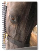 For The Love Of Grain Spiral Notebook