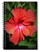 For The Love Of Hibiscus Spiral Notebook